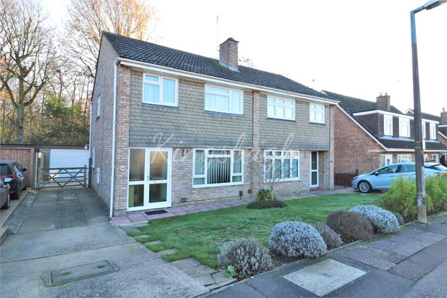 Thumbnail Semi-detached house for sale in Evergreen Drive, Colchester, Essex