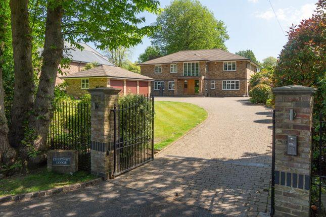 Thumbnail Detached house to rent in 2A Eaton Park, Cobham