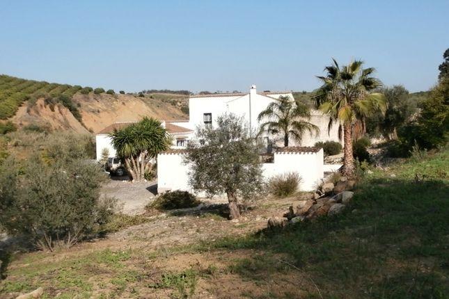 Thumbnail Villa for sale in Spain, Málaga, Casarabonela