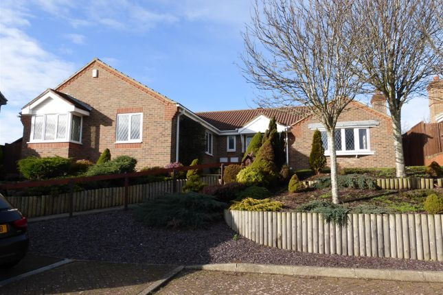 Thumbnail Detached bungalow for sale in Flint Close, Seaford