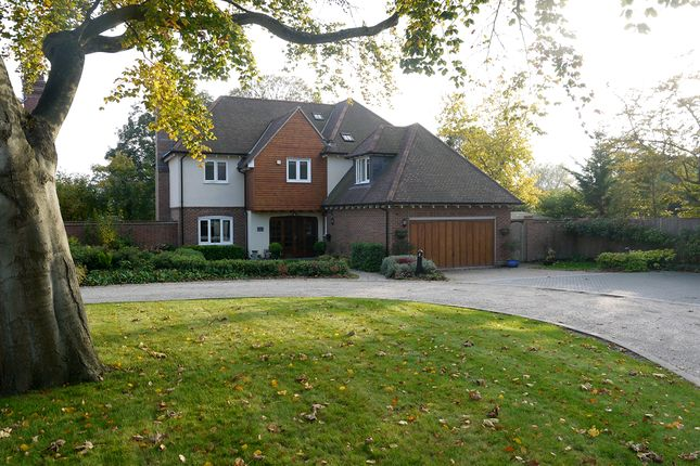 Thumbnail Detached house for sale in Taryn Grove, Bromley