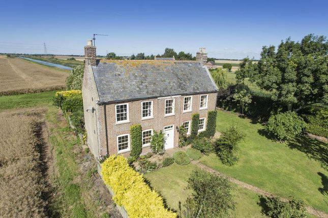 Thumbnail Detached house to rent in Mill Bank, Wisbech