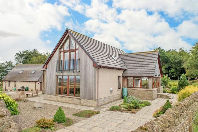 Thumbnail Detached house for sale in Scotia House, Cairnconon Hill, Arbroath