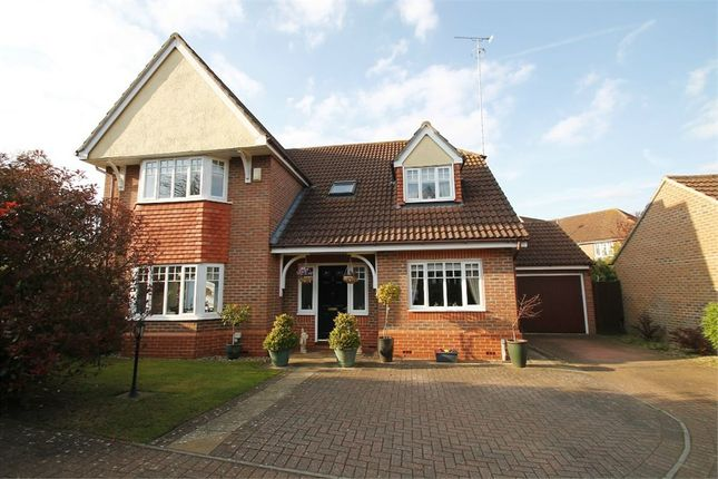 Thumbnail Detached house for sale in Rush Close, Rushmere St Andrew, Ipswich