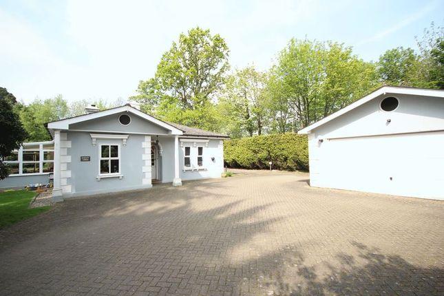 Thumbnail Detached bungalow for sale in Pembury Road, Tunbridge Wells