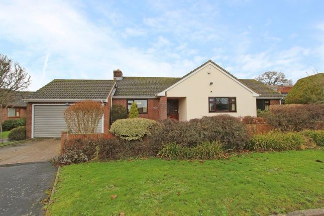 Thumbnail Detached bungalow for sale in Toogoods Way, Nursling, Southampton