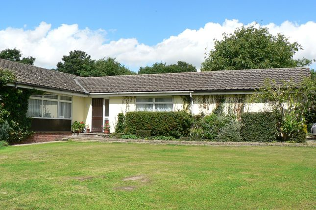 Thumbnail Detached bungalow for sale in Harts Lane, Ardleigh, Colchester
