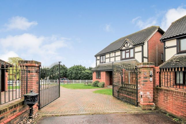 Thumbnail 4 bedroom detached house to rent in Castle Close, Romford
