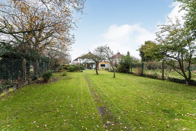 Rear Garden of Redfern Avenue, Whitton, Hounslow TW4