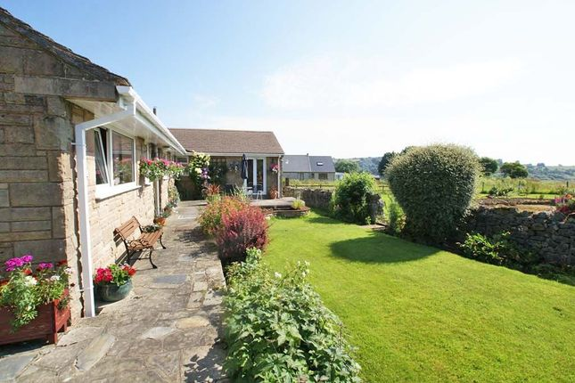 Thumbnail Detached bungalow for sale in Uppertown, Bonsall, Derbyshire