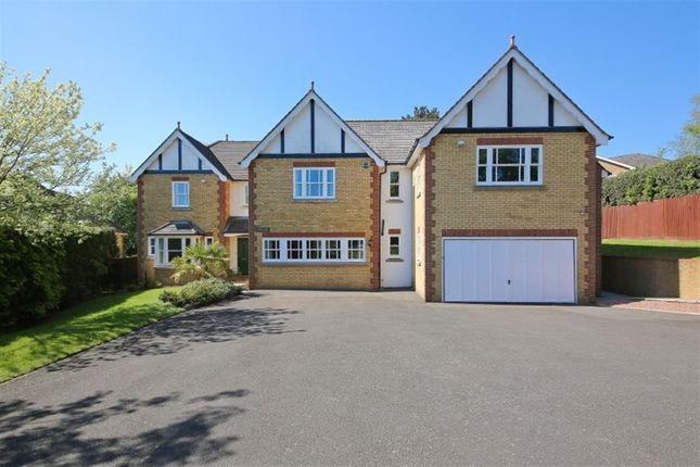 Thumbnail Detached house to rent in Hollybush Close, Sevenoaks