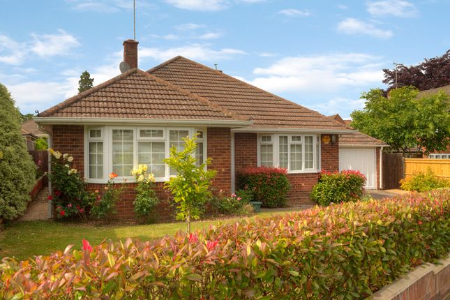 Thumbnail Bungalow for sale in Sheppard Road, Basingstoke