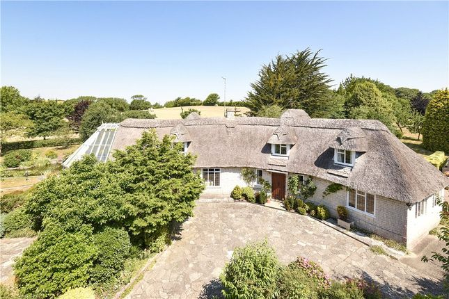 Thumbnail Equestrian property for sale in Radipole Lane, Weymouth, Dorset