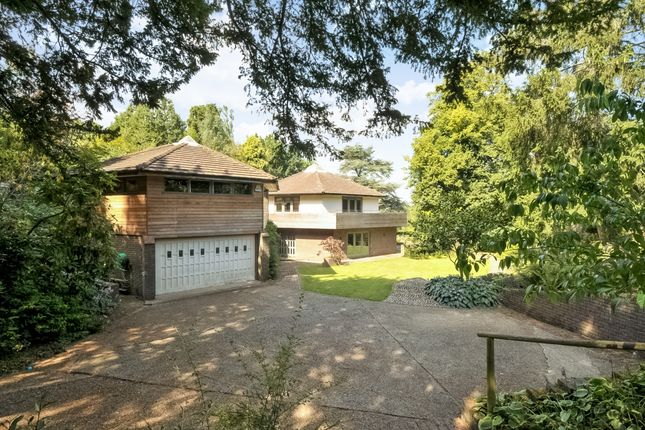 Thumbnail Property to rent in Oakfield, Hawkhurst, Cranbrook
