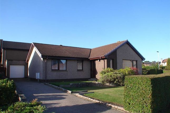 Thumbnail Detached bungalow for sale in Beech Brae, Elgin, Moray