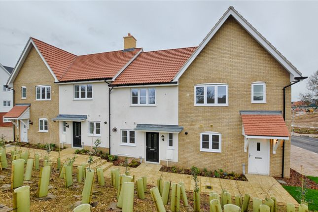 Thumbnail Terraced house for sale in Grant Road, Bishop's Stortford