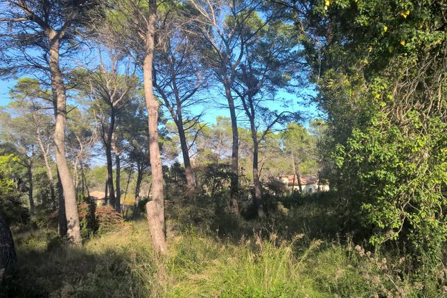 Thumbnail Land for sale in Mouans Sartoux, Alpes Maritimes, France
