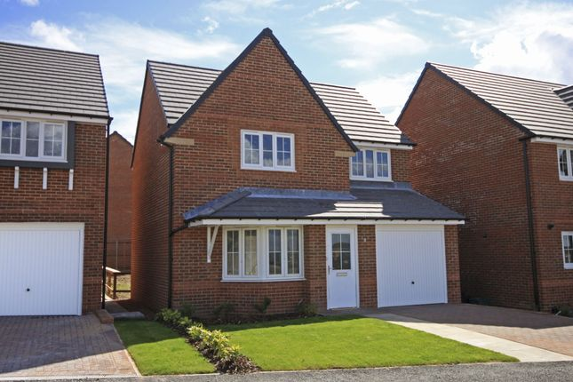 "Thumbnail Detached house for sale in ""Cheadle"" at Ponds Court Business, Genesis Way, Consett"