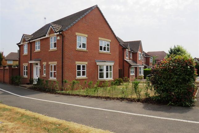 Thumbnail Detached house to rent in Starflower Way, Mickleover, Derby