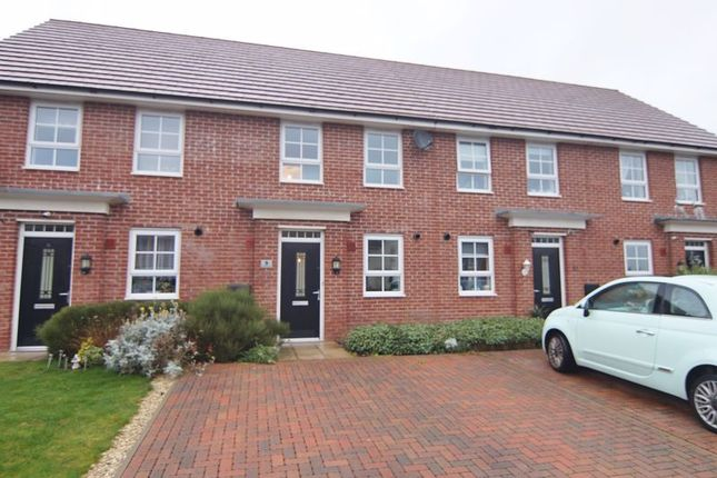 Thumbnail Terraced house to rent in Grasshopper Drive, Warton