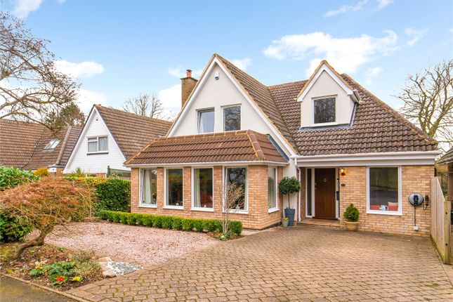 Thumbnail Detached house for sale in Roundwood Gardens, Harpenden, Hertfordshire