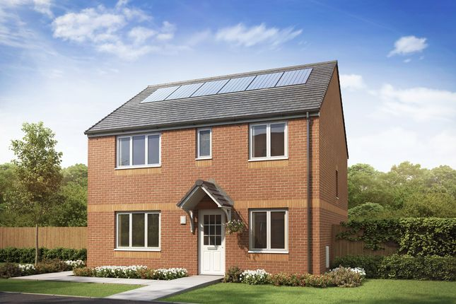 """Thumbnail Detached house for sale in """"The Thurso"""" at Newfield Gardens, Stonehouse, Larkhall"""