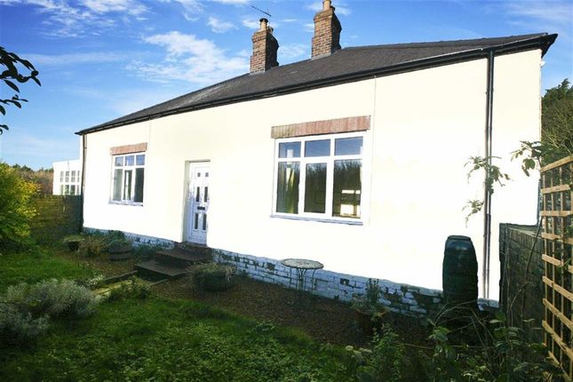 Thumbnail Bungalow for sale in Seaton Deleval, Whitley Bay, Tyne And Wear