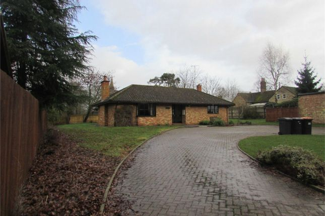 Thumbnail Detached bungalow to rent in High Street, Upper Dean, Huntingdon