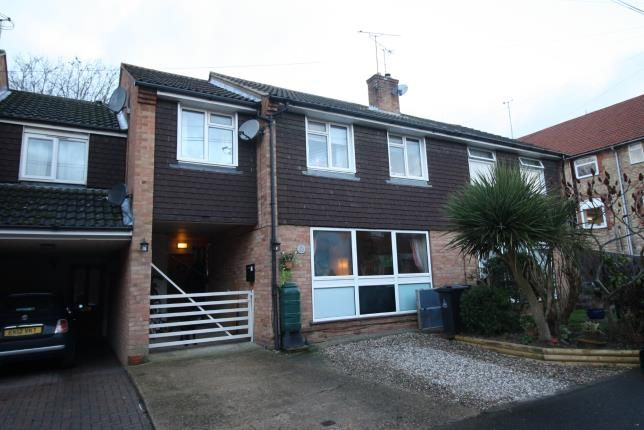 Thumbnail Semi-detached house for sale in Mount Pleasant, Maldon