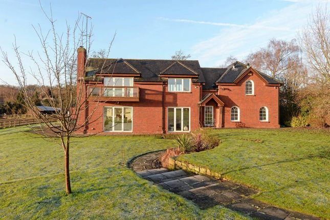 Thumbnail Property for sale in Burley Hill, Allestree, Derby