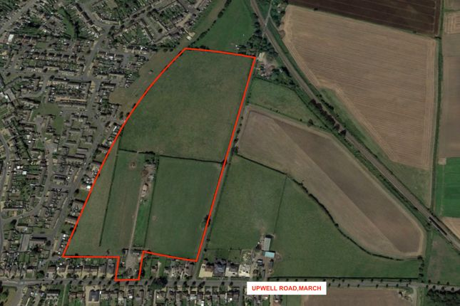 Thumbnail Land for sale in Land North Of Upwell Road, March