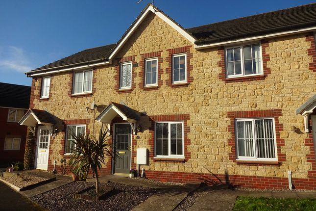 Thumbnail Terraced house to rent in Old Castle Close, Celtic Horizons, Newport