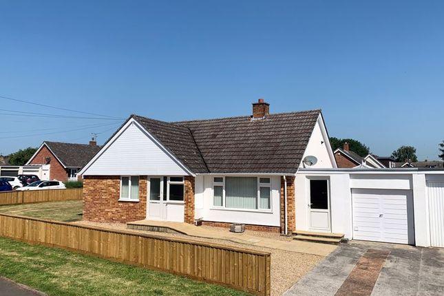 Thumbnail Detached bungalow for sale in Newlands Crescent, Ruishton, Taunton