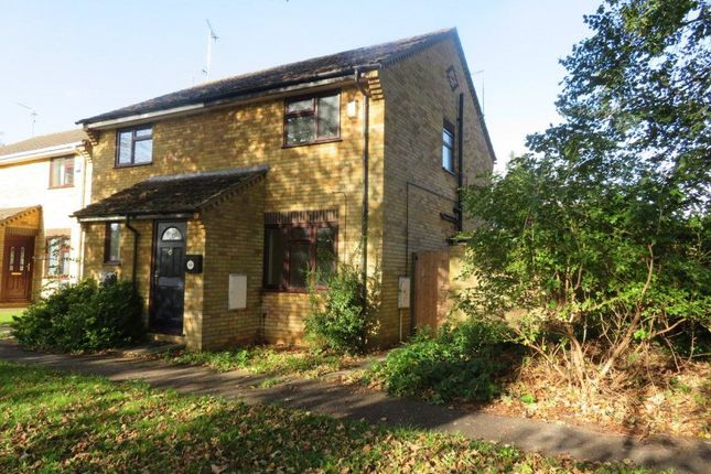 Thumbnail Semi-detached house to rent in Swale Avenue, Peterborough