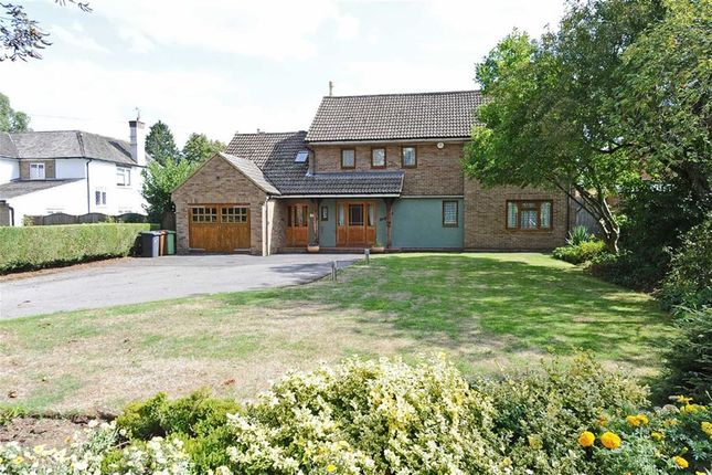 Thumbnail Detached house for sale in The Promenade, Wellingborough