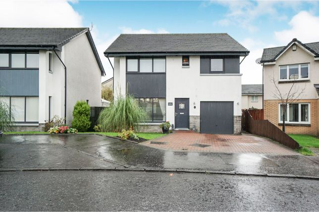 Thumbnail Detached house for sale in Redlands Place, Tullibody