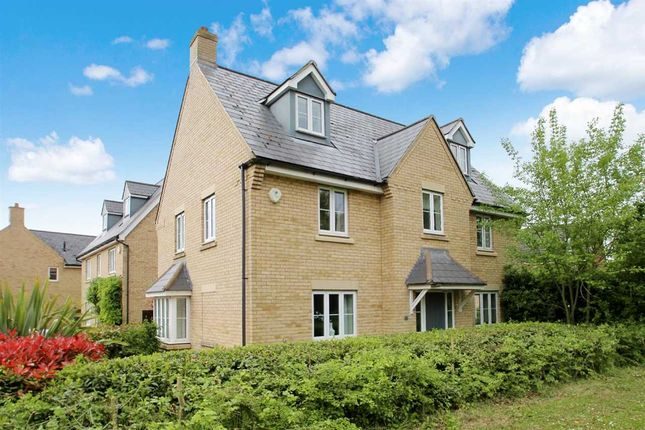Thumbnail Detached house for sale in Banthorpe Grove, Grange Farm, Kesgrave, Ipswich