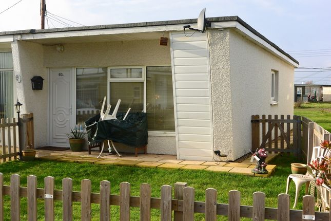 Thumbnail Bungalow for sale in Willow Avenue, Bel Air Chalet Estate, St. Osyth, Clacton-On-Sea
