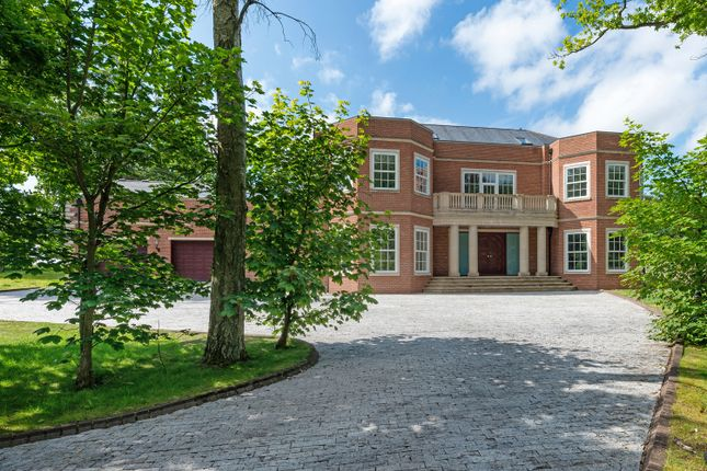 Thumbnail Detached house for sale in The Birches, Tranwell Woods, Morpeth, Northumberland