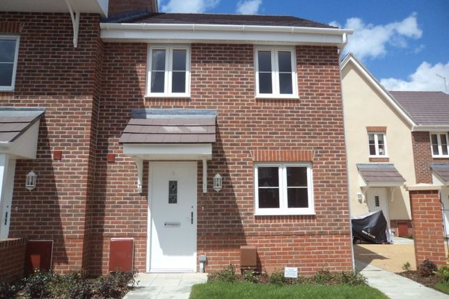 Thumbnail Semi-detached house to rent in Blossom Drive, Waterlooville