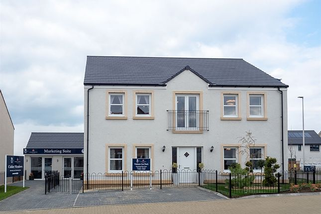 "Thumbnail Detached house for sale in ""The Herriot "" at East Calder, Livingston"