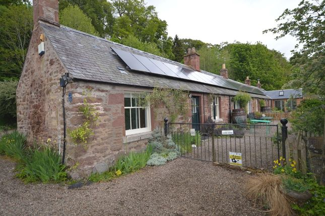 Thumbnail Cottage to rent in Littleton Farm Cottages, Kirriemuir, Angus