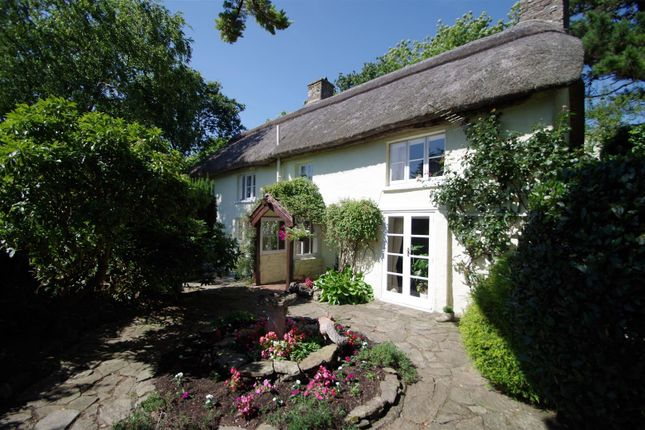 Thumbnail Cottage for sale in Church Hill, Knowle, Braunton