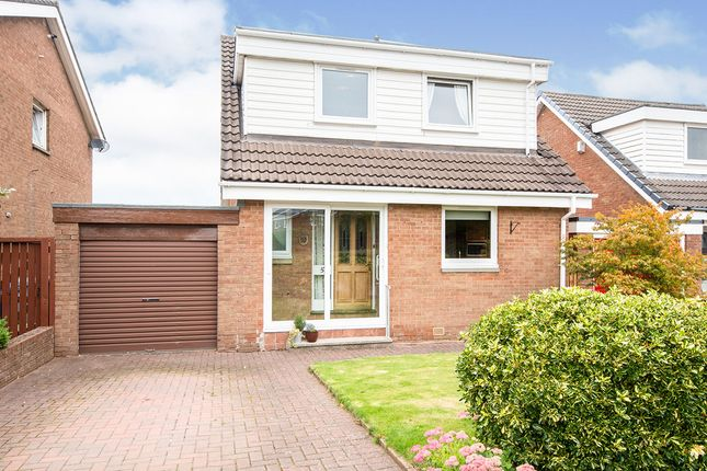 Thumbnail Detached house for sale in Larch Grove, Hamilton, South Lanarkshire