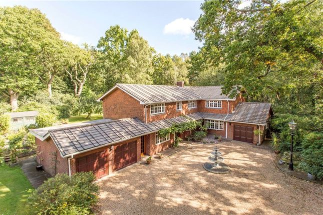 Thumbnail Detached house for sale in Tanglewood Ride, West End, Woking, Surrey