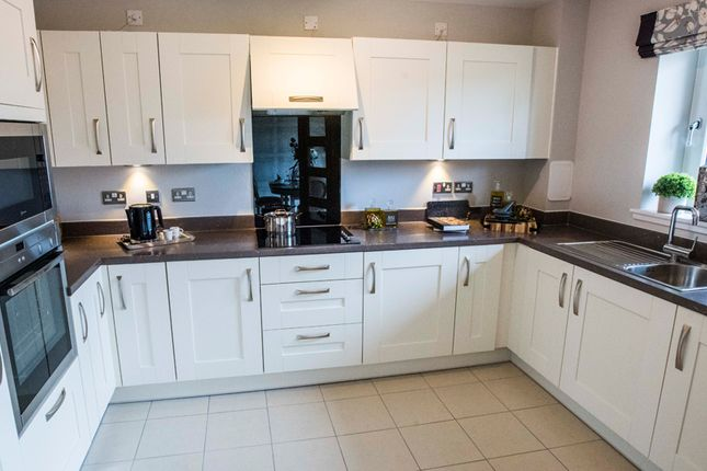 Typical Kitchen of Stewarton Road, Newton Mearns, Glasgow G77