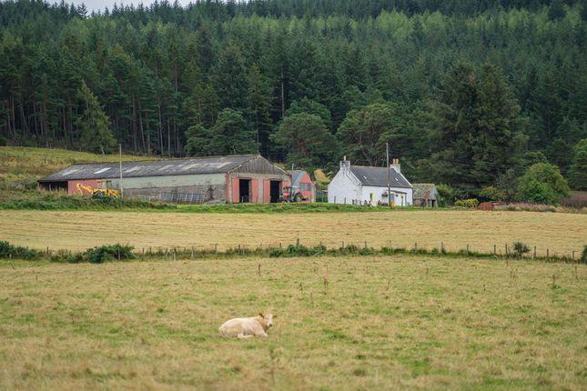 Thumbnail Farm for sale in Botriphnie, Keith