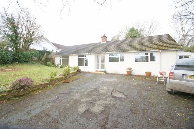 Thumbnail Detached bungalow to rent in Whitestone, Exeter