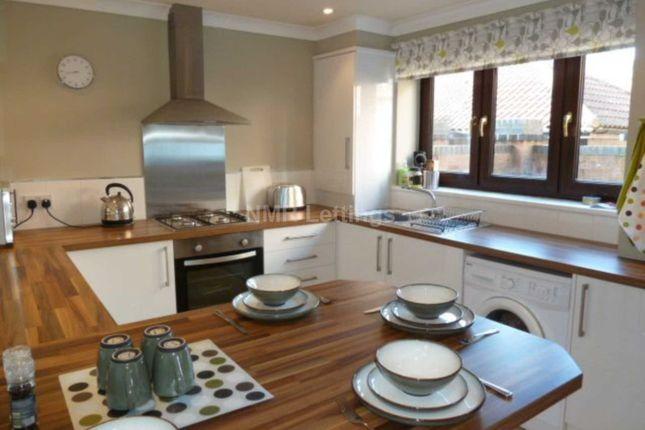Thumbnail Property to rent in Gillhurst Grange, Sunderland