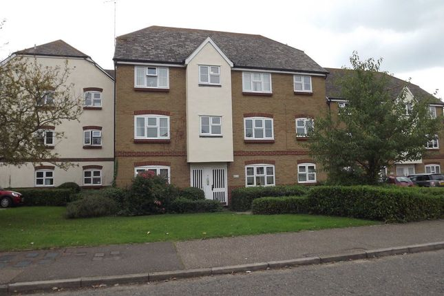 Thumbnail Flat to rent in Mulberry Gardens, Witham